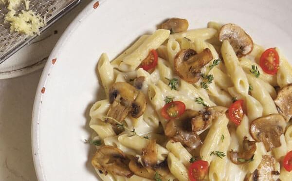Penne en salsa de champiñones y pecorino receta de cocina