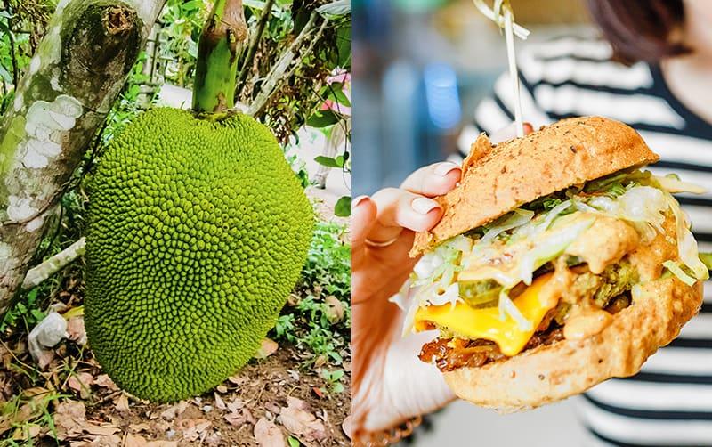 Alternativas saludables para una hamburguesa sin de carne Hamburguesa de Jaca